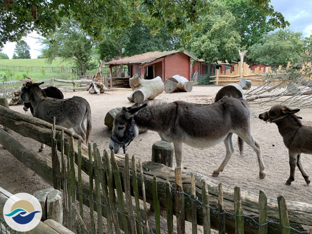 Zoo Arche Noah Grömitz