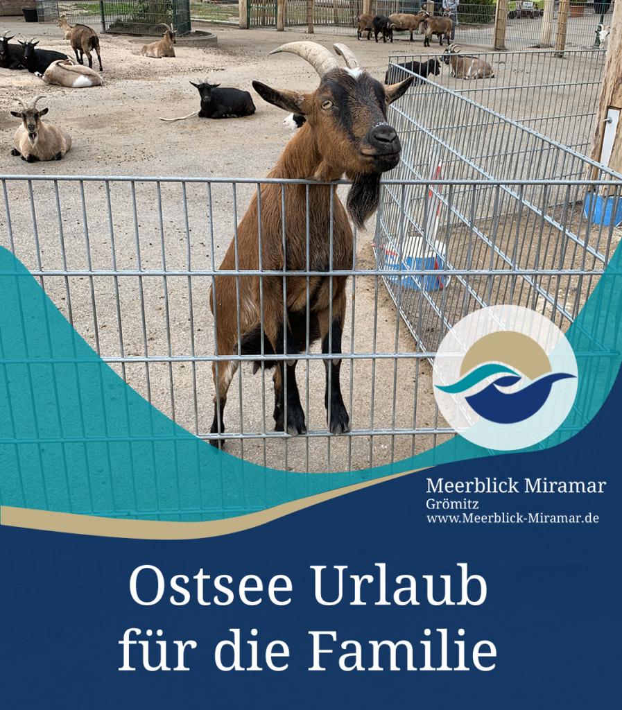 Ostsee Urlaub für Familien