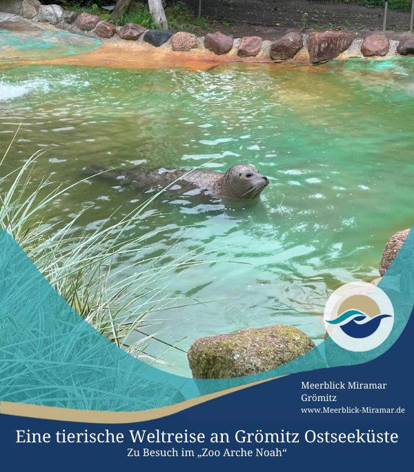Eine tierische Weltreise an Grömitz Ostseeküste